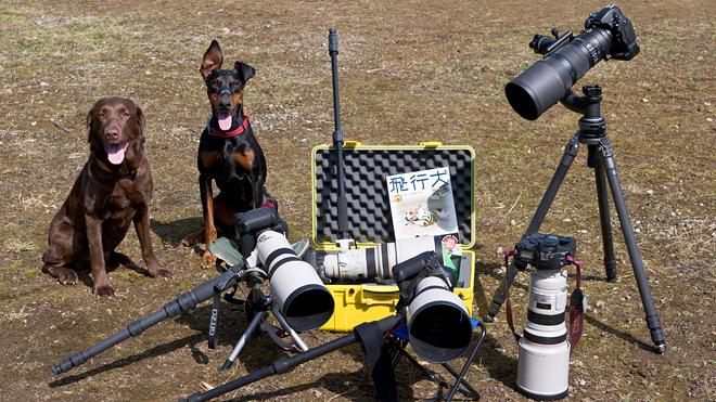 飛行犬撮影会で使用される撮影機材