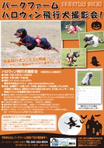 2012年10月27・28日バークファーム・ハロウィン飛行犬撮影会