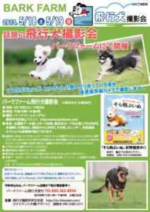バークファーム飛行犬撮影会
