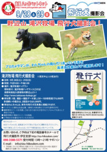 2013年9月28・29日清里・野辺山 滝沢牧場飛行犬撮影会
