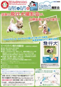 2013年8月31日・9月1日ビーナスライン飛行犬撮影会