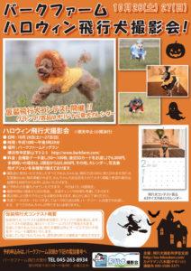 2013年10月26・27日バークファーム・ハロウィン飛行犬撮影会